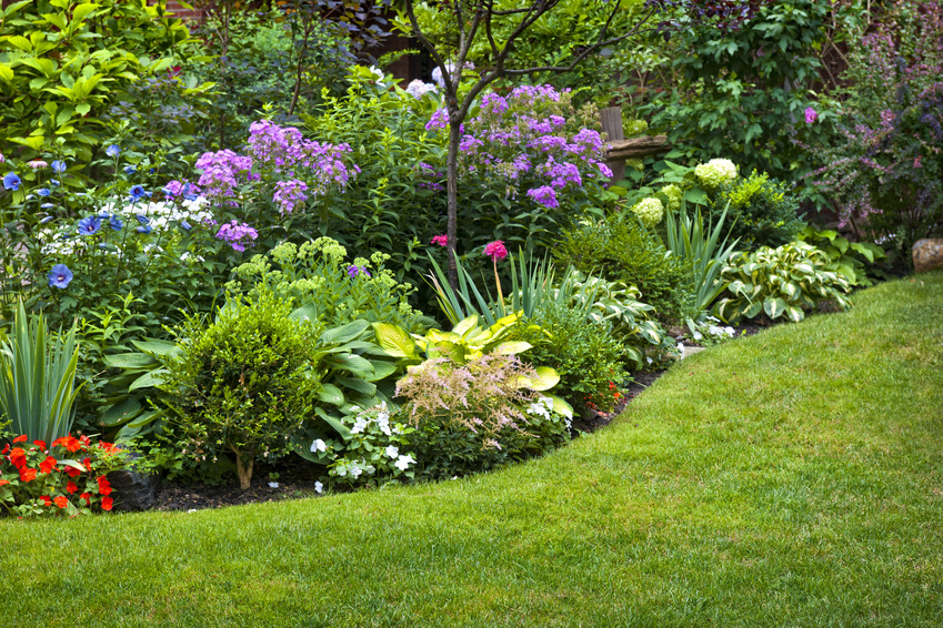 landscaping design company